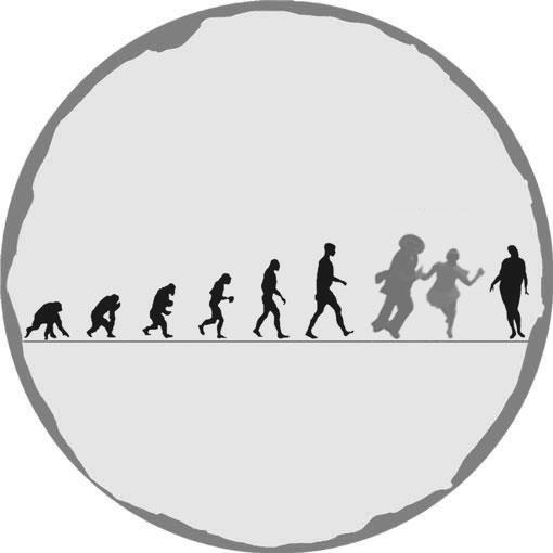 Evolution of Jive